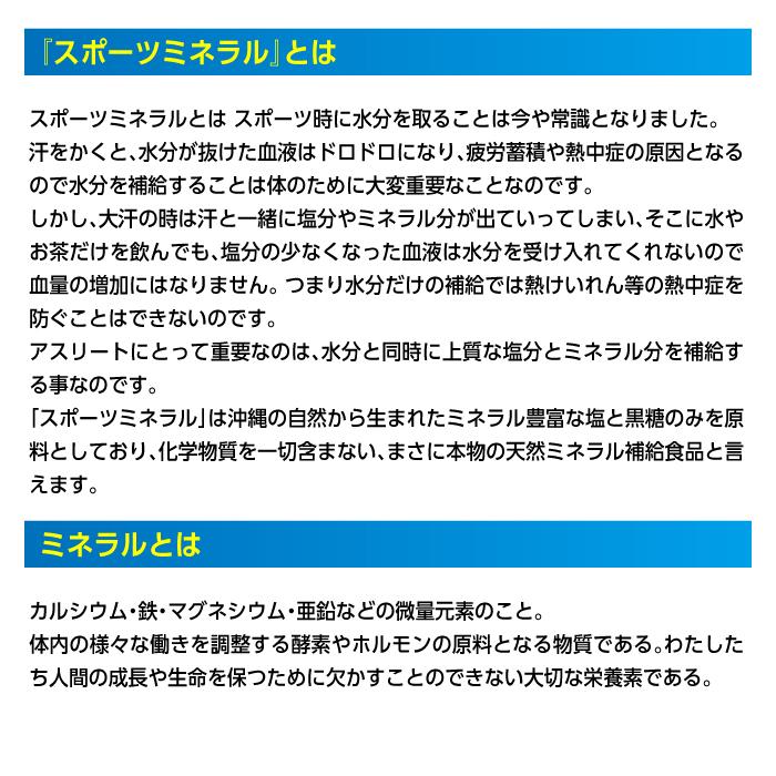【ヒロウン】HG-SPM11 スポーツミネラル40包(2.5g×4包×10パック) 詳細