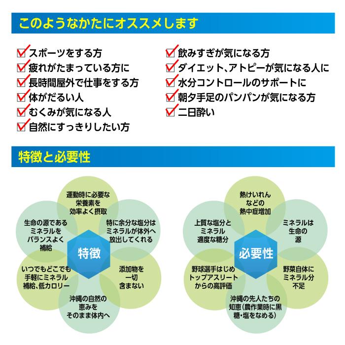 【ヒロウン】HG-SPM11 スポーツミネラル40包(2.5g×4包×10パック) 詳細3
